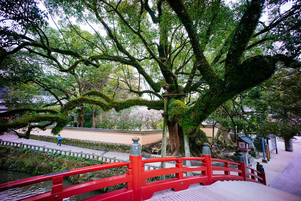 dazaifu-tenmangu-shrine